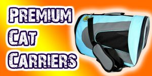 The Best Cat Carriers