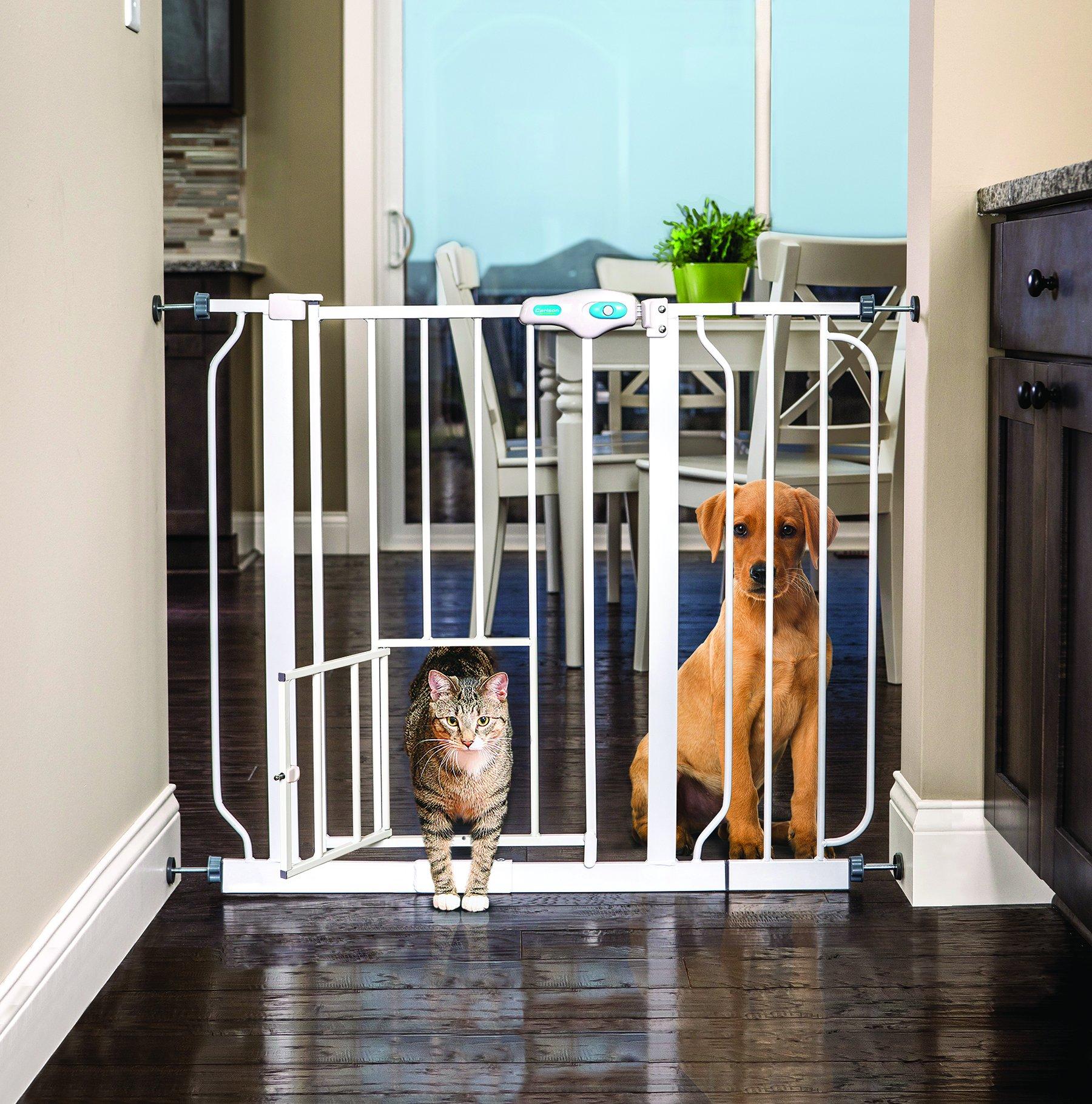 The Best 6 Dog Gates 10