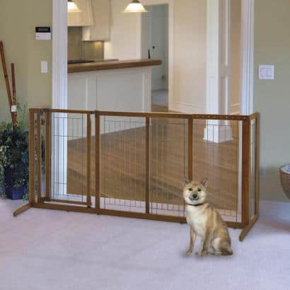 Best Dog Gate
