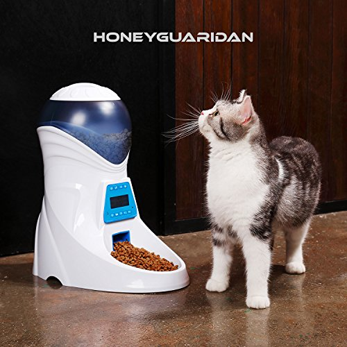 The Best Automatic Cat Feeders 8
