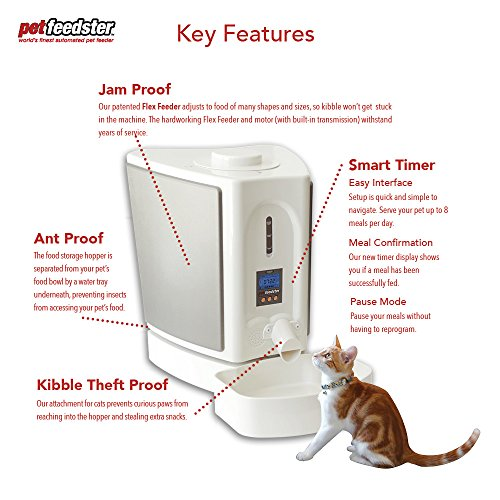The Best Automatic Cat Feeders 7