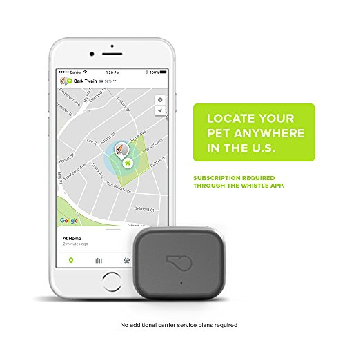 The Best GPS Dog Trackers 3
