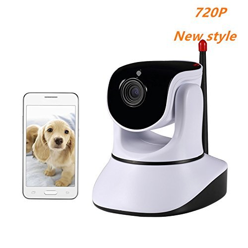 The 10 Best Pet Cameras 14