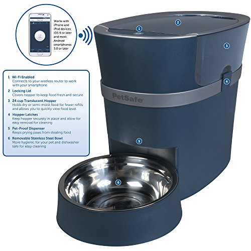 The Best Automatic Cat Feeders 4