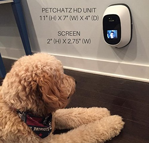 The 10 Best Pet Cameras 10